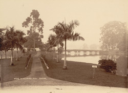Scene in Dalhousie Park, Rangoon 4301533